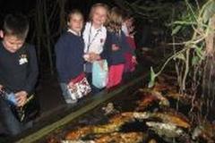 ABC przyrody-wycieczka do palmiarni