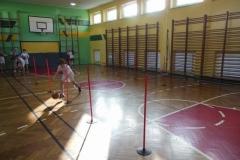 Zajęcia nadobowiązkowe- koszykówka chłopców