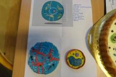 Zajęcia przyrodnicze-towrzymy komórke